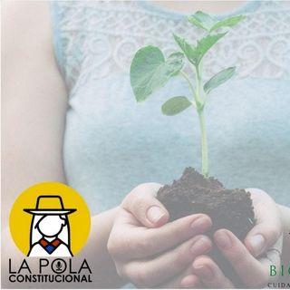 Ecofeminismo: la relación de las mujeres con la Pachamama