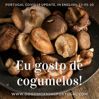 Covid (update), Communicating (in Portuguese) & Cogumelos (a mushroom unboxing!)
