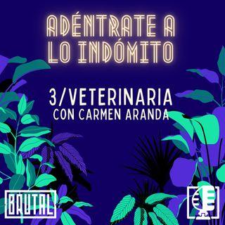 Veterinaria con Carmen Aranda | Adéntrate a lo indómito #03