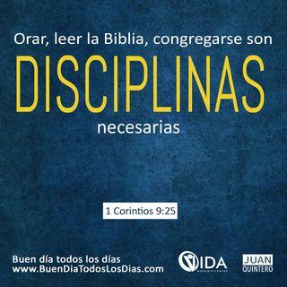 BUENA DISCIPLINA