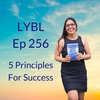 Ep 256 - 5 Principles For Success