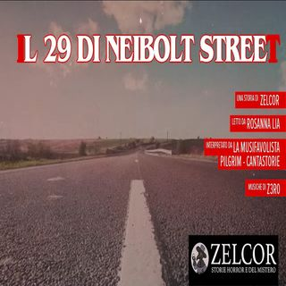 Audiolibro - Il 29 di Neibolt Street - Zelcor Storie Horror