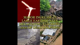 MAJOR INCREASE IN LARGE EARTHQUAKES, DEVASTATING FLOODING, 100s OF DEAD DOLPHINS