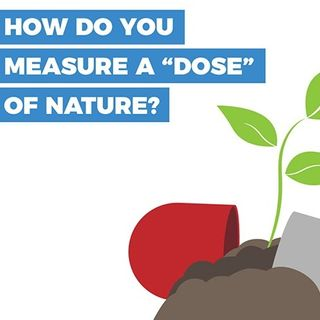 """Big Blend Radio: Can We Measure a """"Dose"""" of Nature?"""