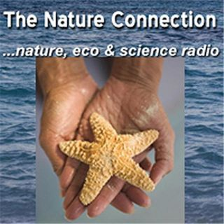 The Nature Connection -