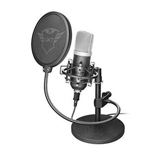 Il microfono professionale