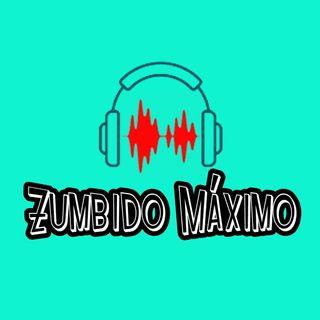 Radio Zumbido Máximo