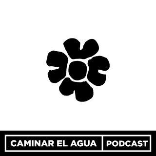 Teaser - lo que descubrirás en este podcast