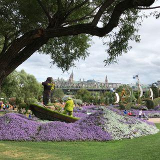 Parques urbanos: mucho más que el pulmón de las ciudades