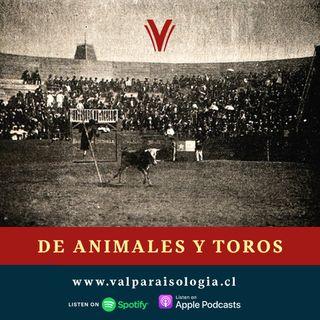 De Animales y Toros | Archivos de papel