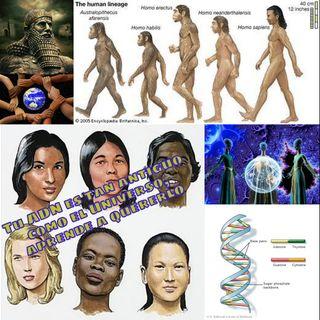 #100 Tu ADN es tan antiguo como el Universo, aprende a quererlo #ADN #Kryon #Multidimensional #Galactico