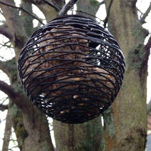 Birdsong in the Rain 02-05-15