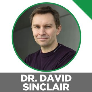 Ben Greenfield Interviews Dr. David Sinclair About Lifespan: Why We Age―and Why We Don't Have To.