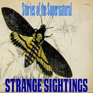 Strange Sightings | Interview with Al Santariga | Podcast