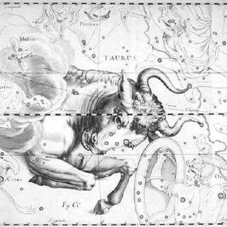 Costellazioni e segni Zodiacali - Toro
