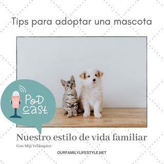 Tips para adoptar una mascota