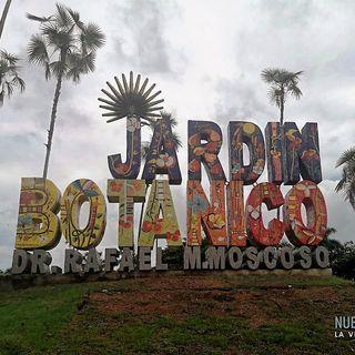 NUESTRO OXÍGENO Jardín Botánico de Santo Domingo - Biólogo Teodoro Clase
