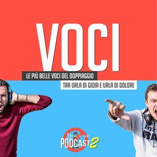 Podcast #34: VOCI
