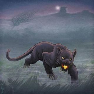 Episode 49 Phantom Cats, Tasmanian Tigers, and Oklahoma Jaguars