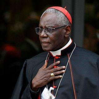 I sacerdoti secondo Sarah: zelanti, generosi, virili