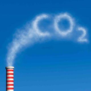 NUESTRO OXÍGENO Día mundial por la reducción del Co2