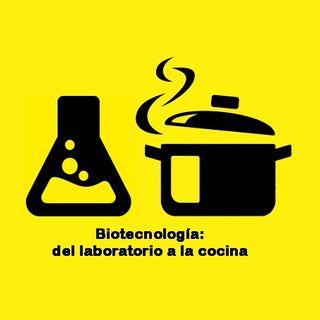 Biotecnología: del laboratorio a la cocina (piloto)
