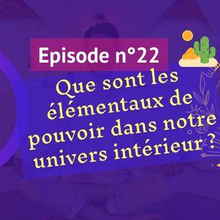 22: Que sont les élémentaux dans notre univers intérieur ?