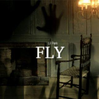 Fly - Lil Perk
