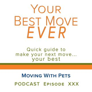 Ep 30 - Moving With Pets