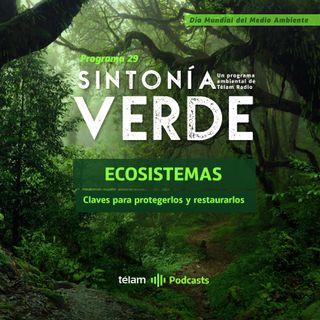 Claves para proteger y restaurar los ecosistemas