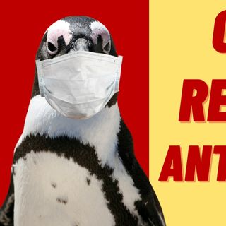 THE PANDEMIC REACHES ANTARCTICA
