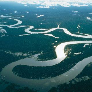 10. In Brasile, lungo il Rio delle Amazzoni