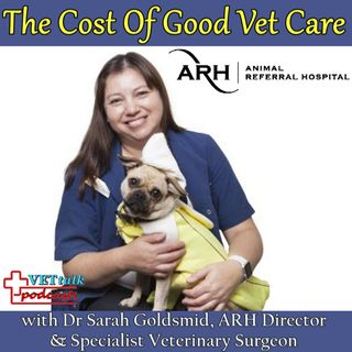 The Cost Of Good Veterinary Care