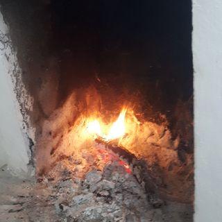 Feuerfantasiereise - Forestpod