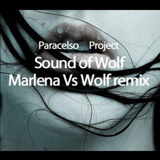 95 - Marlena Vs Sound of Wolf   PP