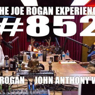 #852 - John Anthony West