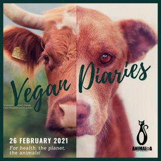 ANIMALIA 19 - Vegan Diaries - 26Feb21