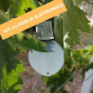 15 - IoT: La Foglia Elettronica!