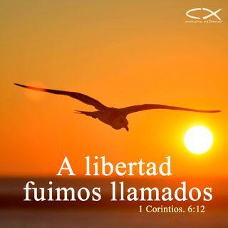 Oración 26 de marzo (A libertad fuimos llamados)