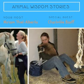 Animal Communication  and Spiritual Connection with Charlotte Banff