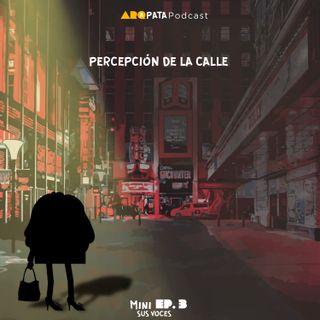 T1MiniE3: Sus voces - Percepción de la calle