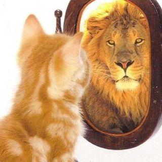 Autostima come farla crescere con 5 strategie di Psicologia