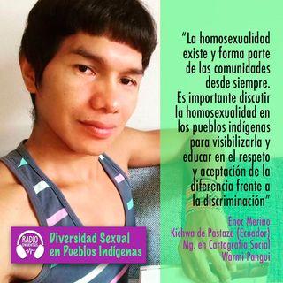 La homosexualidad analizada por unx warmi pangui