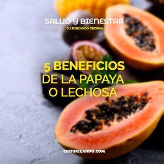 5 beneficios de la papaya o lechosa • Salud y Bienestar - Culturizando