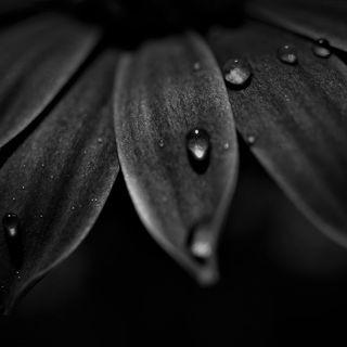 NERO - Profondità e Mistero ...🌈🎨