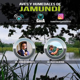 NUESTRO OXÍGENO Aves y humedales de Jamundi - Dr. German Morales-Sr. Julio Calderon