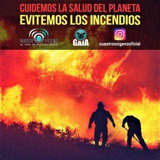 NUESTRO OXÍGENO Cuidemos la salud del planeta evitemos los incendios