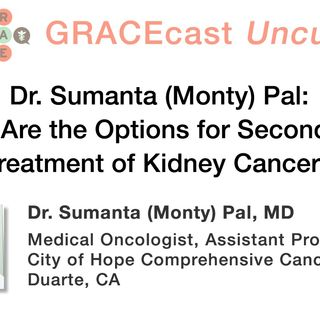 Dr. Sumanta (Monty) Pal: What Are the Options for Second Line Treatment of Kidney Cancer?