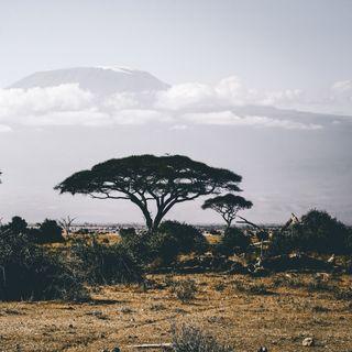 Relajación, África