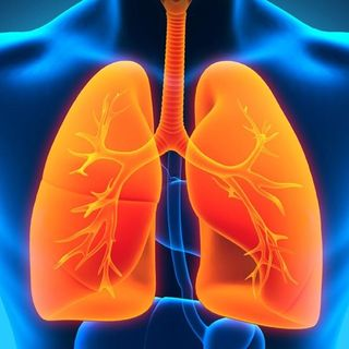 Your Lungs: New Best Ways To Detox, Clean, and Renew!